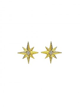 Gold earrings with central Diamond